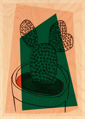 Cactus 07